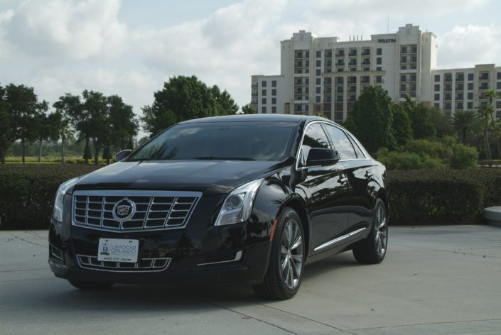 Cadillac chauffeur