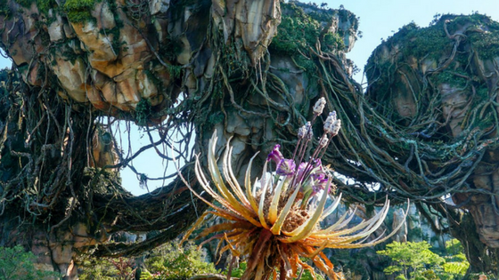 What You Should Know About Pandora - The World of Avatar graphic